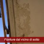 fioriture_vicino-di-casa-infiltrazioni-balconi